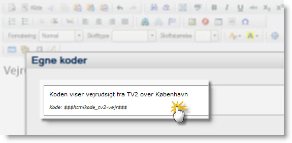 vejret københavn tv2